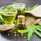 Sind Hanfsamen und Hanfsamenöl gut für die Gesundheit Blog